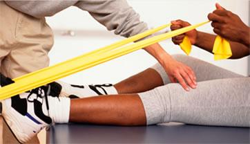 knee strength
